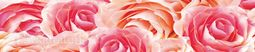 Кухонный фартук пластик Розы