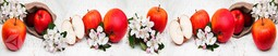 Кухонный фартук пластик Яблочки